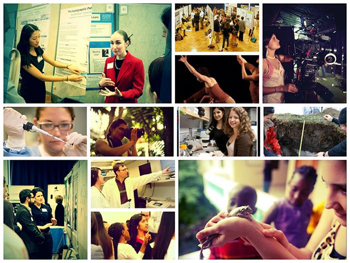 Collage of Undergraduate Research