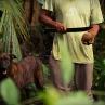 Costa Rica guide - Photo by Katie Schuler